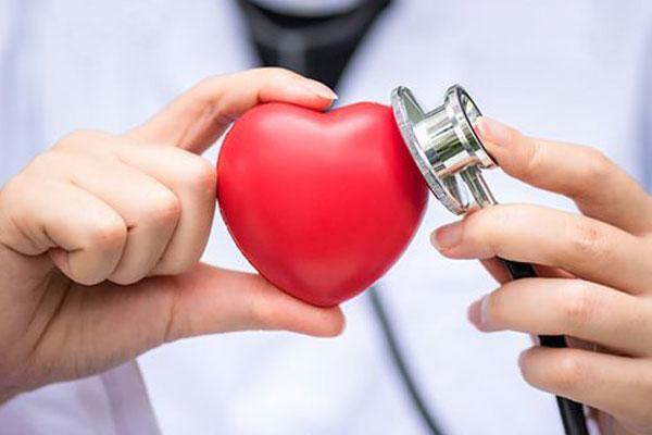 Nuovo Arrivo – Cardiologia Dott.ssa Zocchi